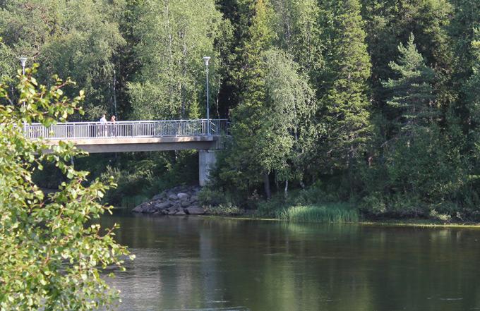 Bron till Tärendöholmen